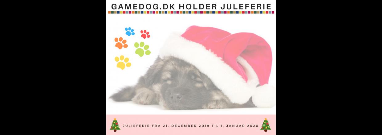 GAMEDOG.DK HOLDER JULIEFERIE