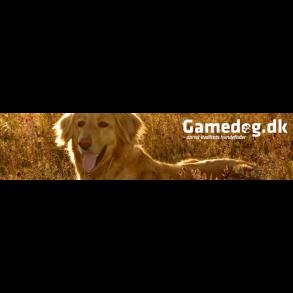 Gamedog Hvalp